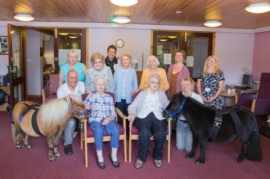 Equality News Update:  Four-legged friends deliver pony therapy to Eildon residents
